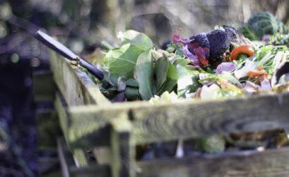 Compost de jardin en bois